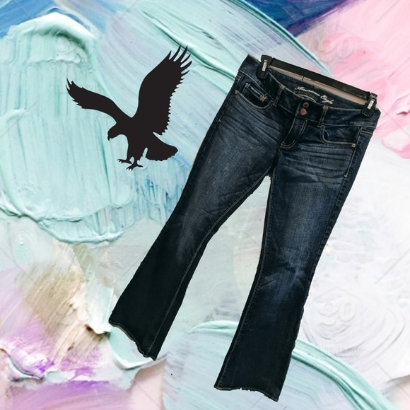 American Eagle Outfitters Denim - AMERICAN EAGLE Artist Jeans Size 6